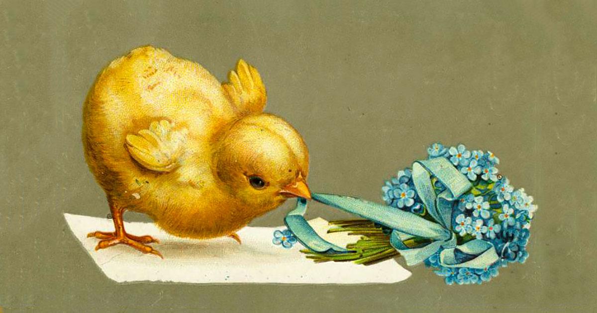 Idee per come scrivere gli auguri di buona Pasqua