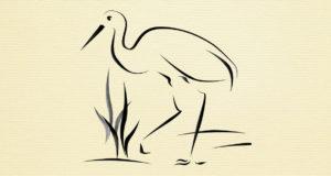 La gru è l'animale al centro della novella Chichibio