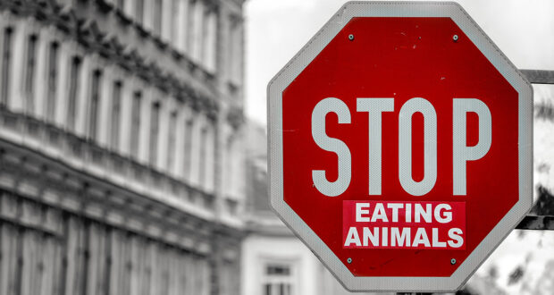 frasi vegan