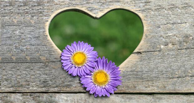 frasi di San Valentino con fiori